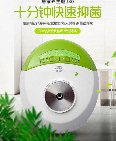 空氣淨化器 臭氧空氣凈化器小型衛生間廁所除味寵物除臭臭氧發生器家用除甲醛   伊卡萊生活館  聖誕節禮物