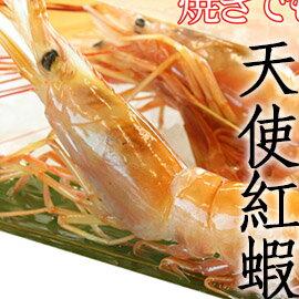 ㊣盅龐水產 ◇20/30生食級天使紅蝦◇2kg/盒 $830/盒 保證最鮮美 - 全場最低價 批發 團購 燒烤