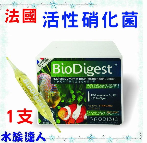 【水族達人】法國《50億 活性 硝化菌(BIO Digest)1支》50億硝化菌 淡、海水專用效果好!