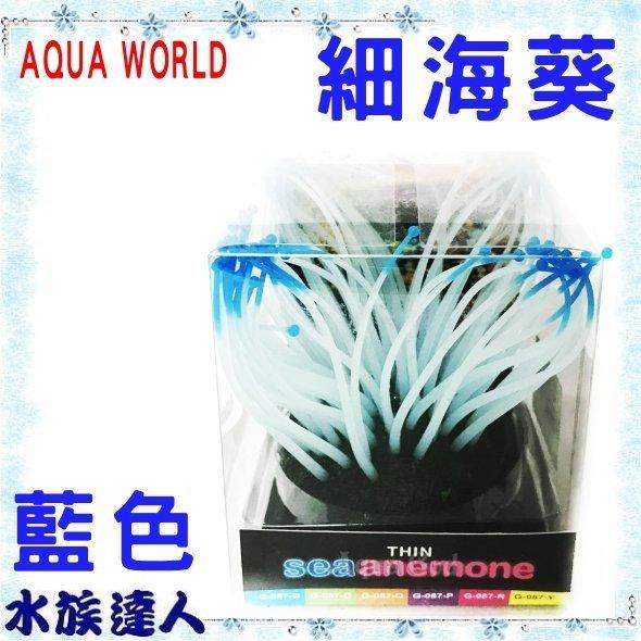 ~水族 ~~造景裝飾~水世界AQUA WORLD~sea anemone 細海葵 螢光藍