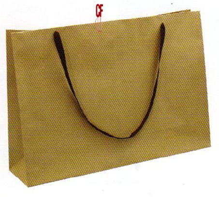 紙袋1K~10入~牛皮~ 棉揹繩 pbag~002
