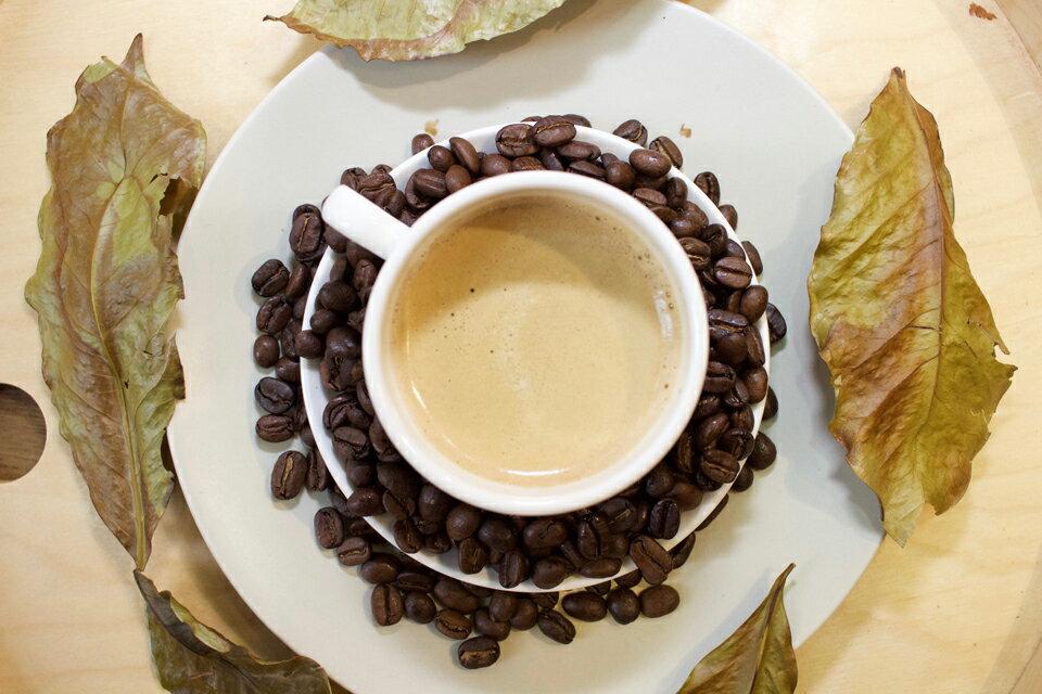 【木時咖啡】瓜地馬拉 薇薇特南果 SHB (Guatemala HHT SHB EP)/半磅/咖啡豆