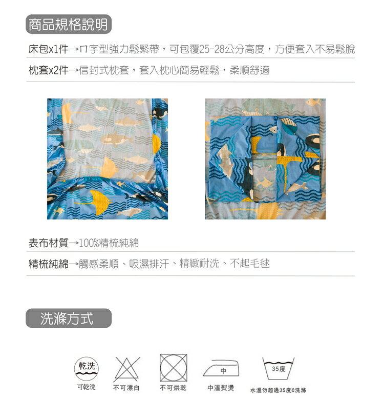 雙人床包兩件組 100%精梳棉-海底世界【大鐘印染、台灣製造】#精梳純綿 5