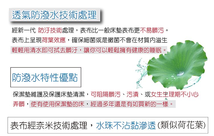保潔墊 (雙人) 藍色-平鋪式 『奈米防污防水』 3層抗污型、可機洗、台灣製 #寢國寢城 4