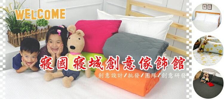 印花搖粒枕頭套【極細超柔、可愛搖粒絨毛巾布】(單品) # 冰雪x奇緣 2