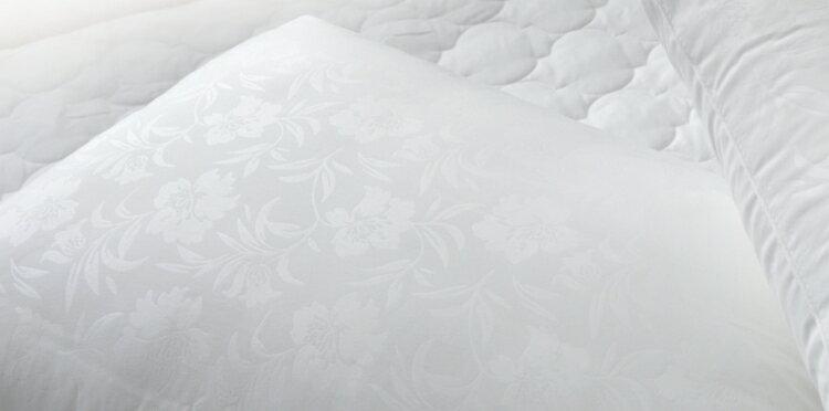 枕頭/天絲健康枕【防?抗菌、吸濕、台灣製】(單品) # 寢國寢城 4