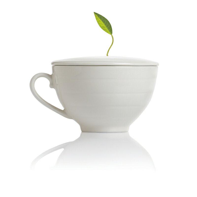 Tea Forte 白瓷咖啡杯 Café Cup 0