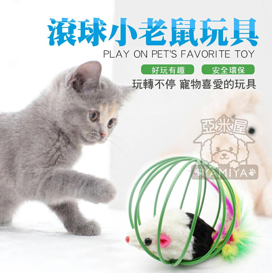 滾動籠中鼠 囚籠鼠 老鼠玩具 寵物貓貓玩具 貓咪互動 貓咪兔皮耗子籠子 經典逗貓小球 貓咪無聊好夥伴《亞米屋Yamiya》