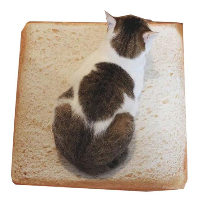 雙12 Supersale 整點特賣 12 / 5 19:00開賣★【免運】貓咪最愛吐司墊(2入組) 土司坐墊 靠墊 仿真麵包墊子 1