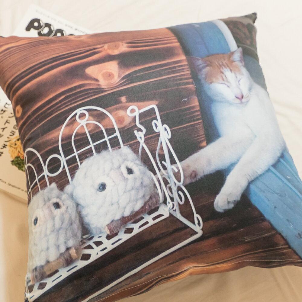 純棉 貓咪方抱枕 45cmx45cm 精選素材