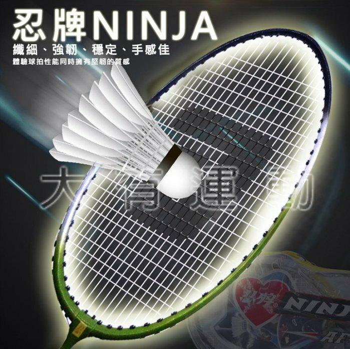 【大有運動】全新 雙支裝 多款式 鐵合金/鋁合金 一體成型 羽毛球拍 羽球拍 台中可自取