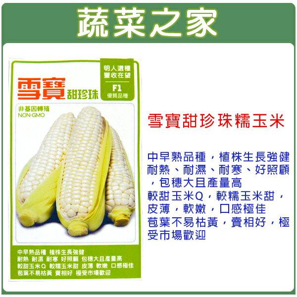【蔬菜之家】G34.雪寶甜珍珠糯玉米種子20顆