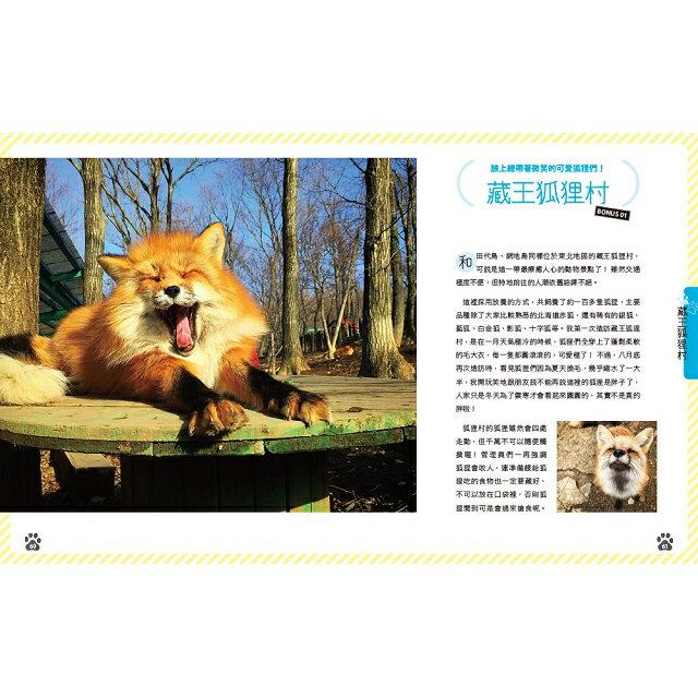 日本貓島旅行 9