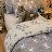 Iron cat 鐵灰小貓【床包駝色素色】單人/雙人熱賣組  舒適磨毛布 台灣製造 1