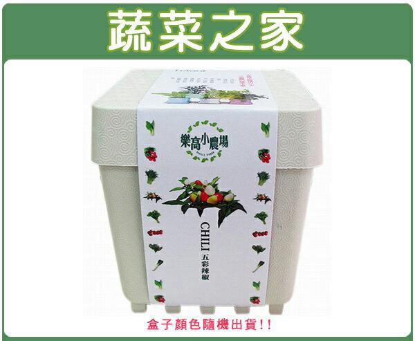 【蔬菜之家004-D01】iPlant小農場系列-五彩辣椒