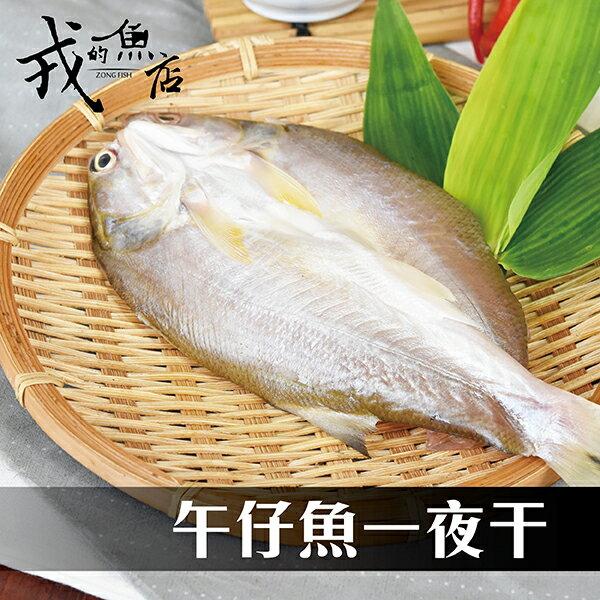 【午仔魚一夜干】新鮮活撈現宰,用一夜干的手法濃縮美味!