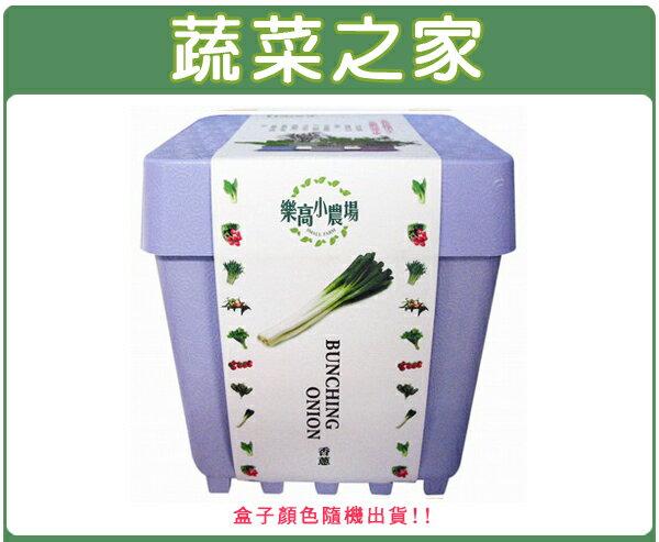 【蔬菜之家004-D04】iPlant小農場系列-青蔥