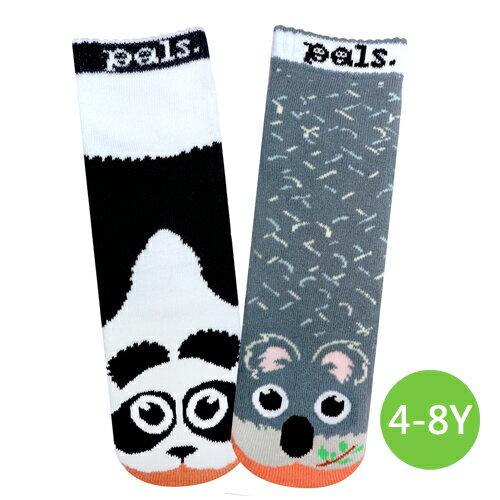 ★衛立兒生活館★美國Pals Socks 好夥伴寶寶襪-熊貓無尾熊(4-8Y)