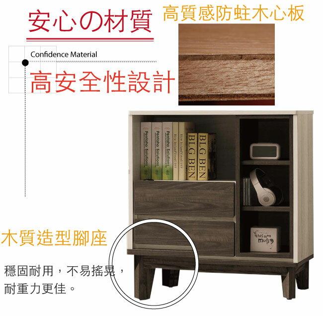 【綠家居】羅提 現代2.6尺二抽低收納櫃