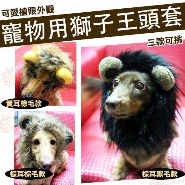 【貓奴必備】 獅子王 寵物 頭套 貓咪 搞笑 獅子 變裝 帽子 保暖 小型犬可用 臘腸 吉娃娃 森林之王
