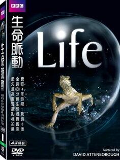 生命脈動DVD