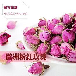 歐洲 玫瑰 法國 玫瑰花 花茶 全館 免運