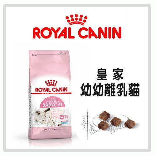 【力奇】Royal Canin 法國皇家 幼幼貓/離乳貓 BC34 2kg-510元>可超取(A012A02)