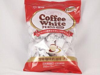 《愛鴨咖啡》 日本原裝進口 雪印奶油球5mlx50粒