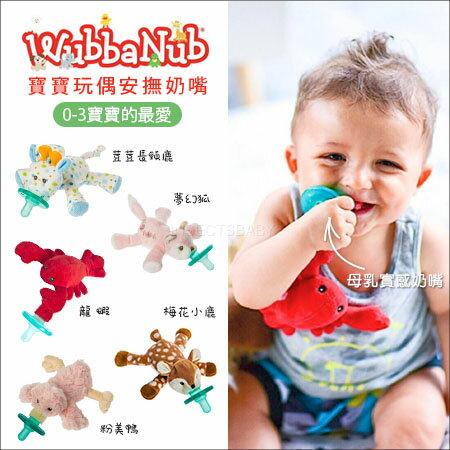 ✿蟲寶寶✿【美國Wubbanub】寶寶不哭~動物款安撫奶嘴搭Soothie4號全圓原味奶嘴多款可選