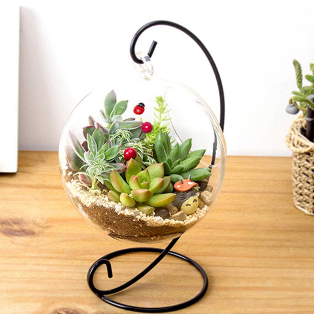 DIY水培植物花卉懸掛玻璃花瓶容器庭園裝潢