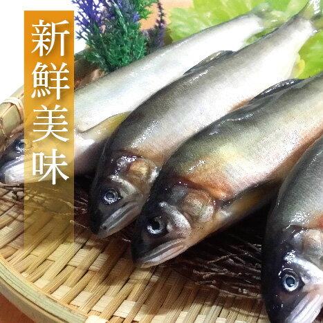 【有魚碼頭】宜蘭鮮嫩公香魚(8尾/盒/1kg)