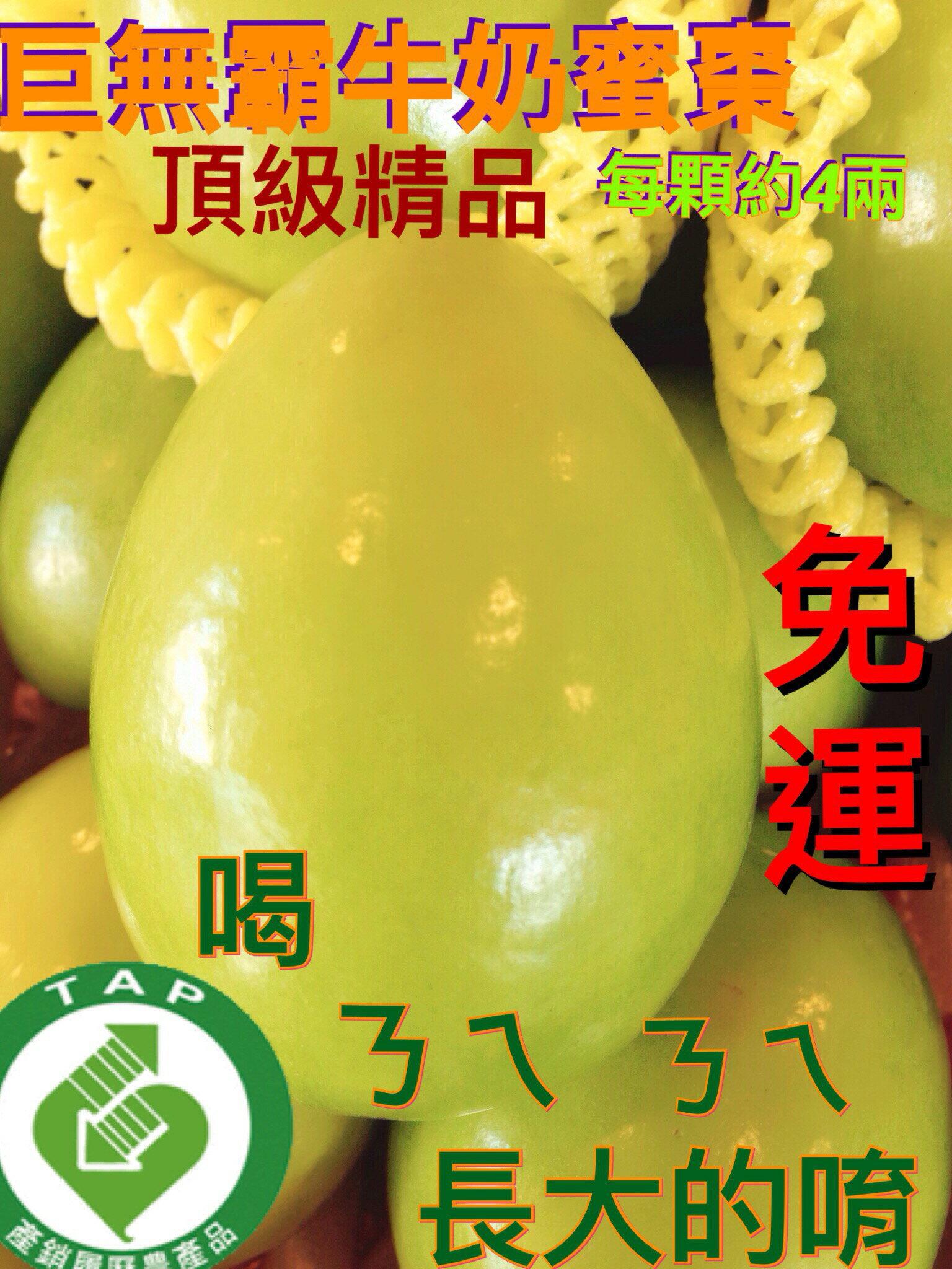 頂級牛奶蜜棗–免運  3L外銷精品12粒裝【皇家果物】