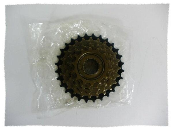 鎖牙式 六速 飛輪 (非定位飛輪)《意生自行車》