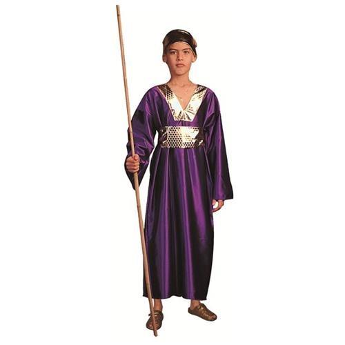 Wiseman Halloween Costume 0