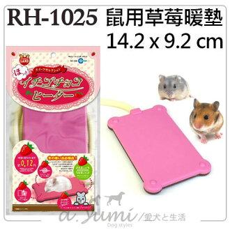 《日本MARUKAN》鼠用草莓電暖墊 RH-1025 / 寵物保溫墊冬日必備