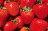 #含運組【感謝綜藝大熱門、上班這黨事節目介紹】節目美食:新鮮大湖高山草莓融心乳酪6吋!全台唯一會爆漿的草莓蛋糕~爆漿草莓乳酪蛋糕2016全新升級版:特價$380,含運優惠$530~聖誕蛋糕推薦 4