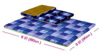 硬式【單人3x6】台灣製-椰子床墊/雙人學生單人床墊/高密度棉床墊/雙面冬夏兩用(品質優良) 租屋首選