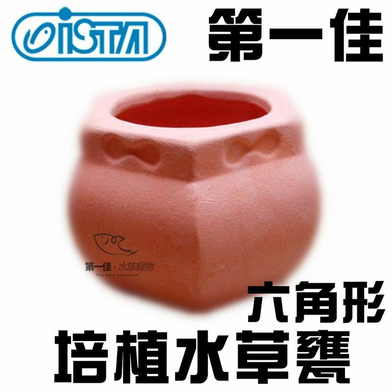 [第一佳 水族寵物] 台灣ISTA伊士達(代理) 造景裝飾 飾品系列-培植水草甕 六角形 E-ED-08