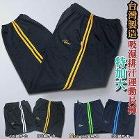 sun-e特加大尺碼吸濕排汗運動褲、台灣製吸濕排汗長褲、吸濕排汗纖維舒適涼感、機能系列運動長褲(003-9082-01)白織帶(08)藍織帶(11)綠織帶(13)金織帶 四色可選 腰圍:3L(36~46英吋)、4L(38~56英吋)-sun e-潮流男裝