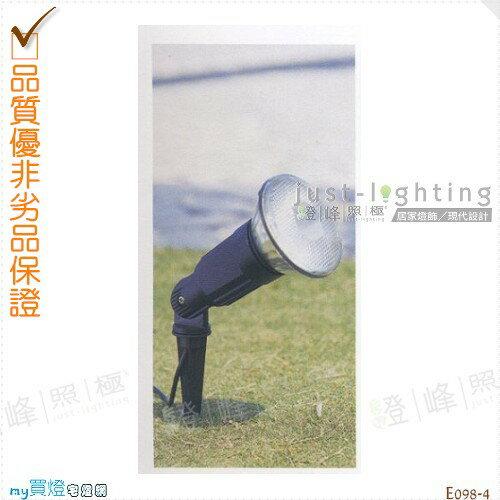 【地面投射燈】PAR38 單燈。防雨防潮耐腐蝕。高33cm※【燈峰照極my買燈】#E098-4
