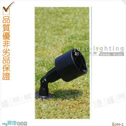 【地面投射燈】PAR38 單燈。防雨防潮耐腐蝕。高27cm※【燈峰照極my買燈】#E099-2