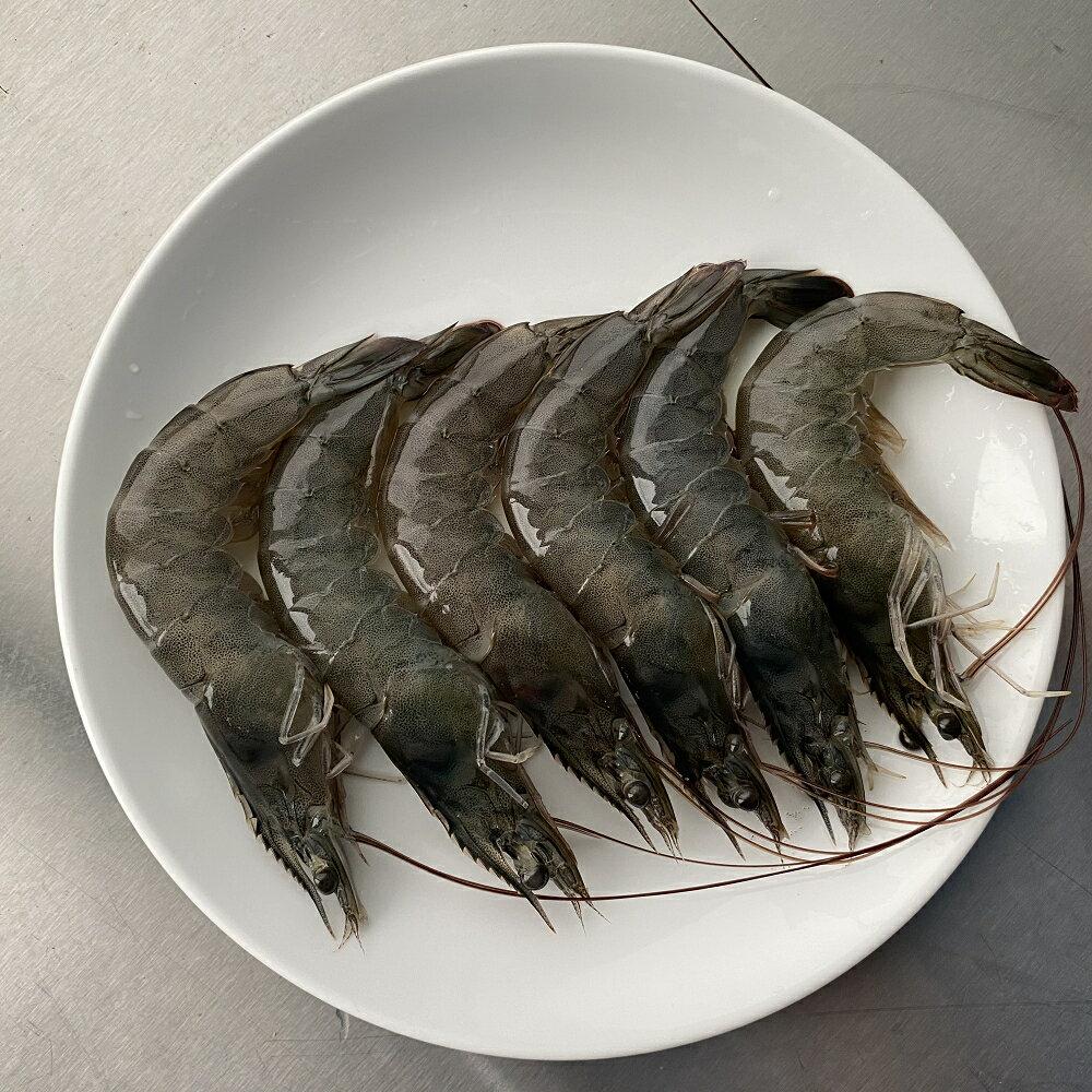 鮮凍純海水白蝦 300g/盒 約15尾【羽堤生態漁場】