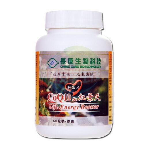 長庚生技 COQ10&紅景天 (350mgx60顆/瓶)x1