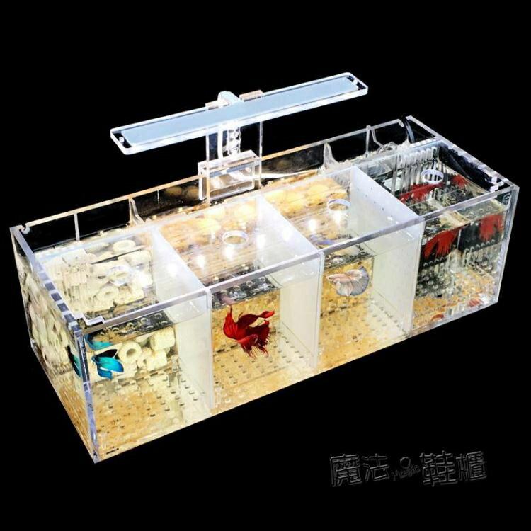斗魚缸孔雀魚繁殖孵化隔離盒亞克力專用小組排缸活體桌面生態創意  ATF 快速出貨
