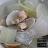 產地直送清淨海水養殖SPA文蛤*鮮甜*二大市集【Doctor嚴選-清淨海水養殖SPA文蛤】蛤蜊 每份約280~330g 2