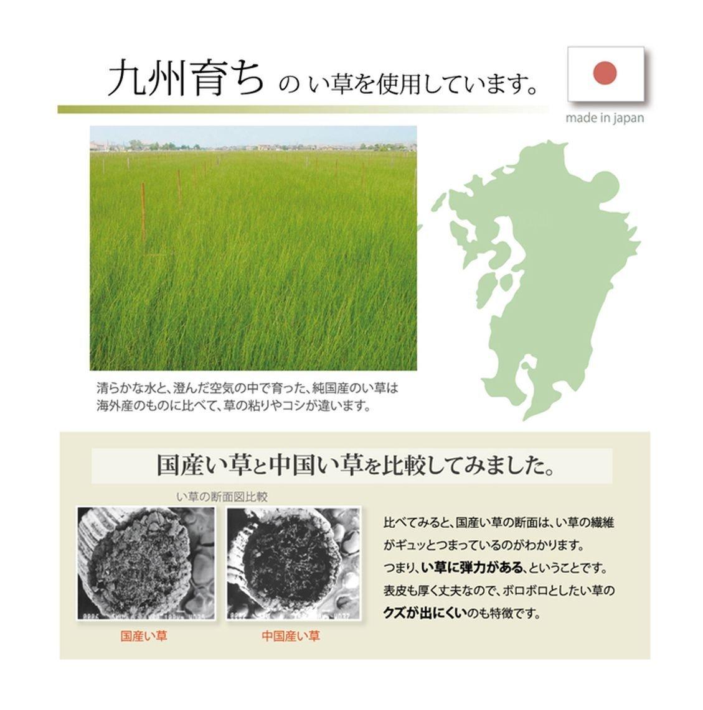 日本IKEHIKO夏日涼感枕頭 / 天然無染 / 九州藺草涼枕 / 枕頭 / 30×20cm / 。2色-日本必買 日本樂天代購(1752*0.2)。件件免運 5
