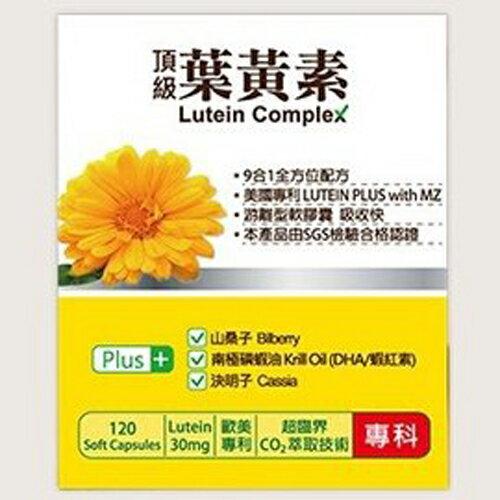 橙心葉黃素軟膠囊(大)120粒【德芳保健藥妝】