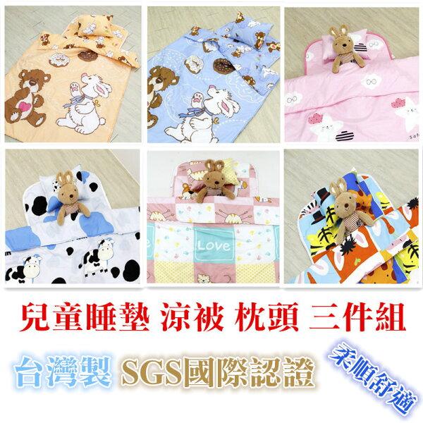 現貨台灣製嬰幼兒童天鵝絨棉兒童睡墊涼被枕頭三件組吸濕排汗睡袋進化版幼兒幼稚園必備兒童寢具戶外露營