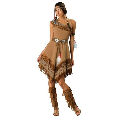 Indian Maiden Adult Costume 0
