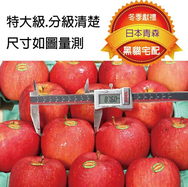 【愛蜜果】日本青森蜜富士蘋果18顆禮盒(5公斤 / 禮盒) 黑貓冷藏配送 2